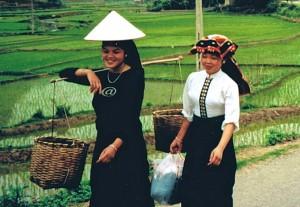 Viet Nam 1 13.31.53